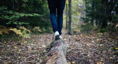 Person balancing on log in forest